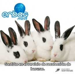 imagen de Electro Software - Erbas - Recolección de basuras