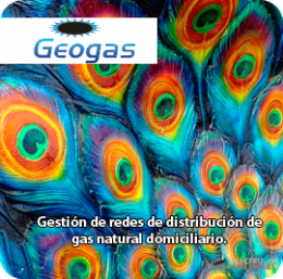 Imagen de Geogas Gestión de redes gas domiciliario - Electro Software
