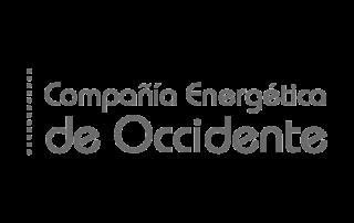 COMPAÑÍA ENERGÉTICA DEL CARIBE